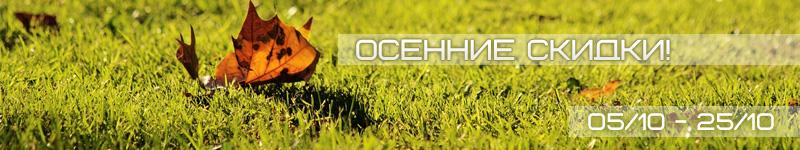 http://www.web-rai.ru/autumn_discount.jpg